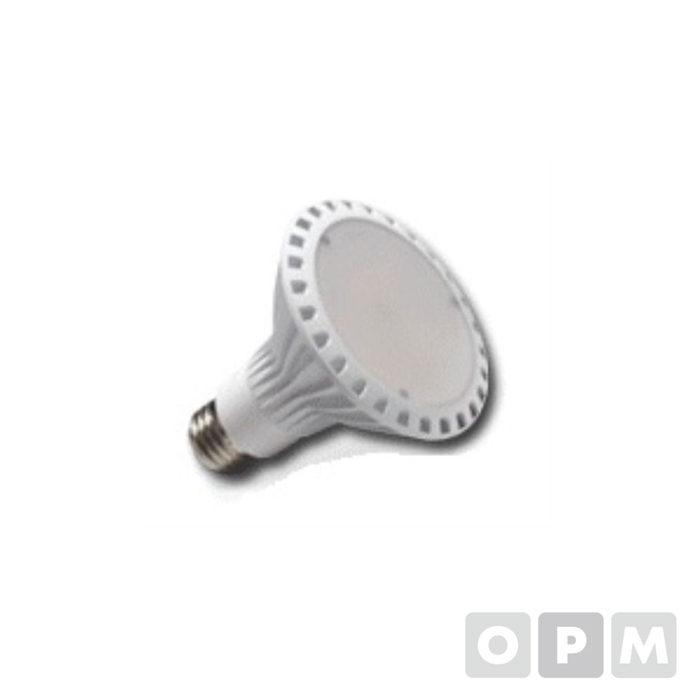 LED/PAR30(투광등) 17W,220V,KS,Φ94x87mm(주광색)